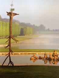 images Penone Versailles
