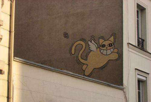 Rue Drevet 18. Arr. Fetter Kater