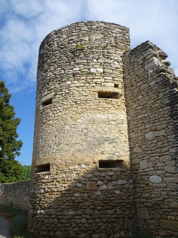 DSC01753 Ca brieres d'Avignon (13)