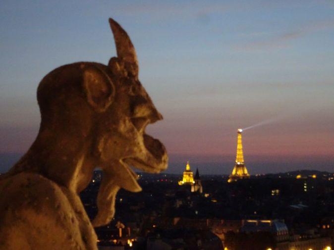 DSC01319 Tüme von Notre Dame bei Nacht August 2018 (13)
