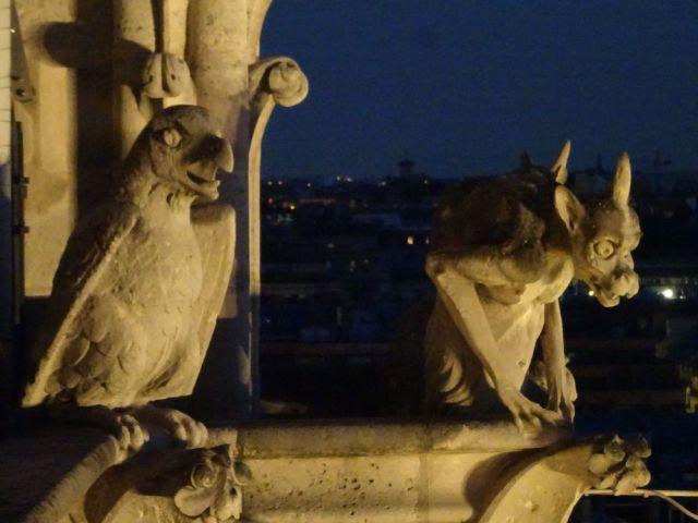 DSC01319 Tüme von Notre Dame bei Nacht August 2018 (15)