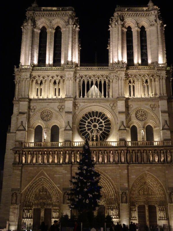 DSC03183 Notre Dame 2018 (2)