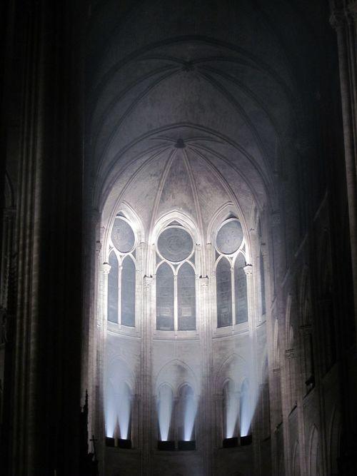 Paris Nuit Blanche Notre Dame 2.10.2010 006