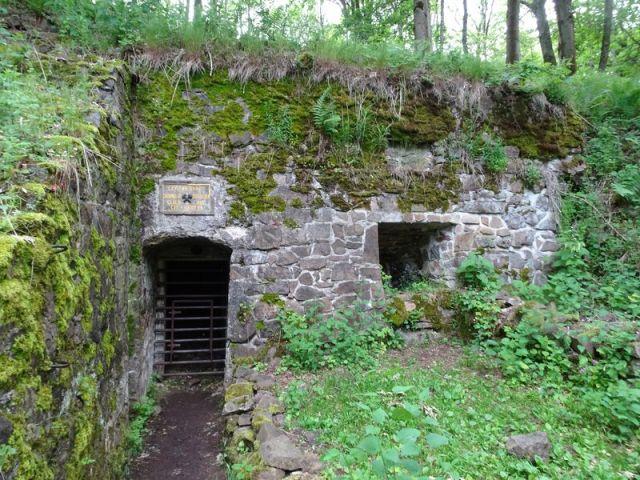 DSC04745 Hartmannsweilerkopf (133)