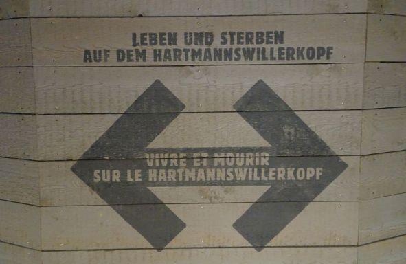 DSC04745 Hartmannsweilerkopf (49)