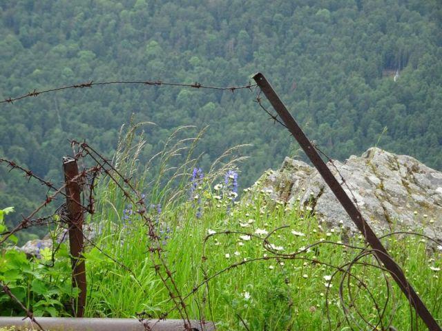 DSC04745 Hartmannsweilerkopf (83)
