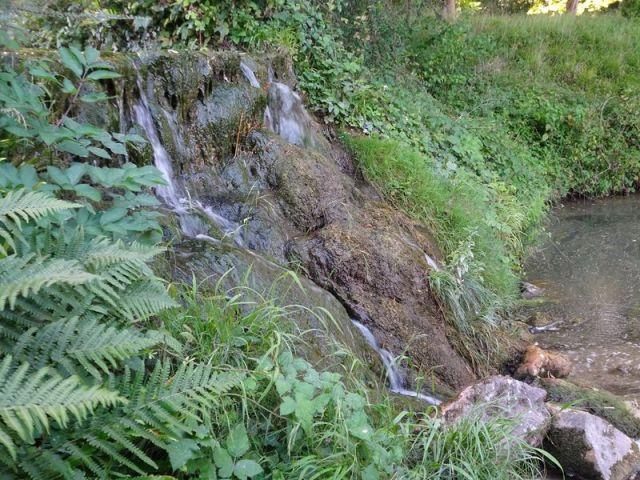 DSC08057 Parc Rousseau (36) La grotte de Naiades