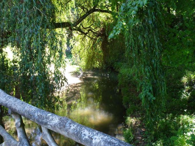 DSC08057 Parc Rousseau (7)