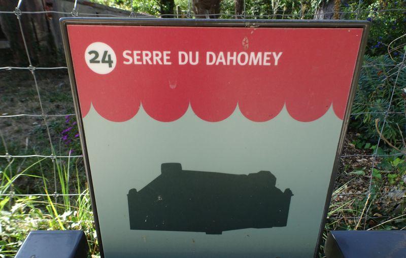 DSC08214 Jardin tropical Vincennes (62)