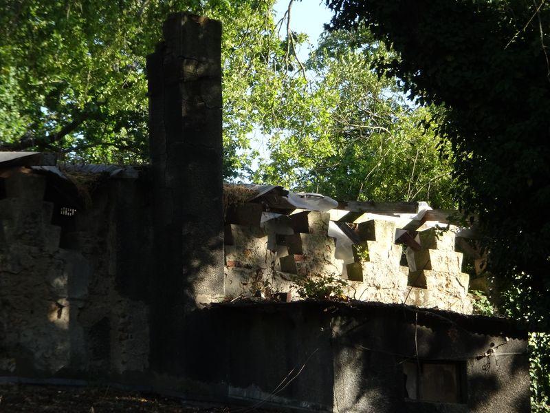 DSC08214 Jardin tropical Vincennes Pavillon de Maroc